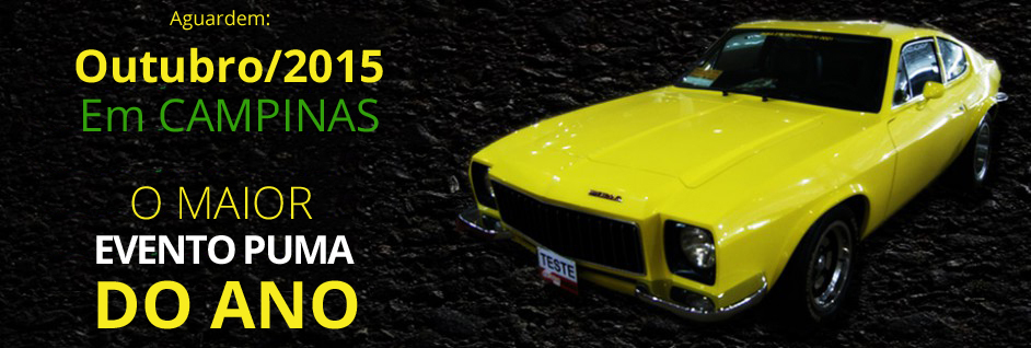 b7927e7e836 Puma Campinas - Esportivos de Fibra